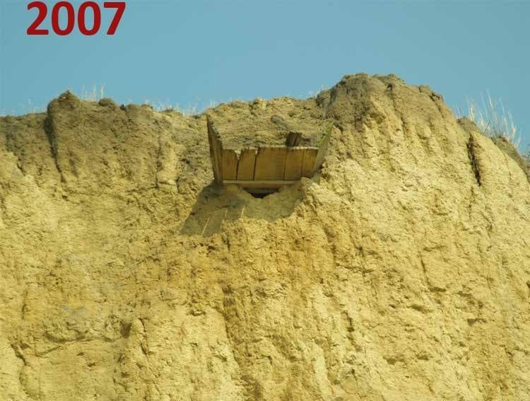 Фото 3: Залишки домовини та кісток в березі Бузького лиману, 2007;