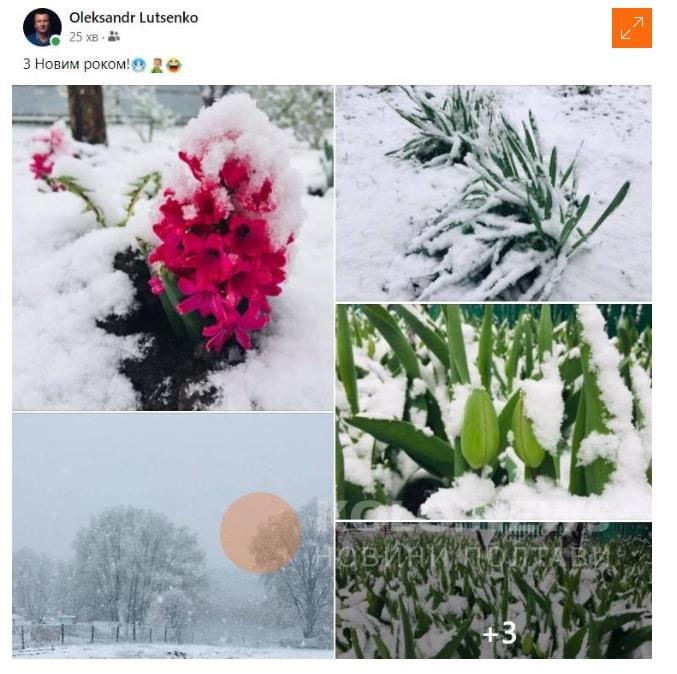 Полтава сніг